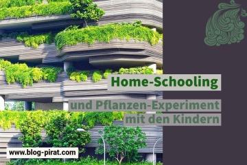 Home-Schooling und Pflanzen-Experiment mit den Kindern