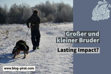 blog pirat - Bruder Lasting Impact